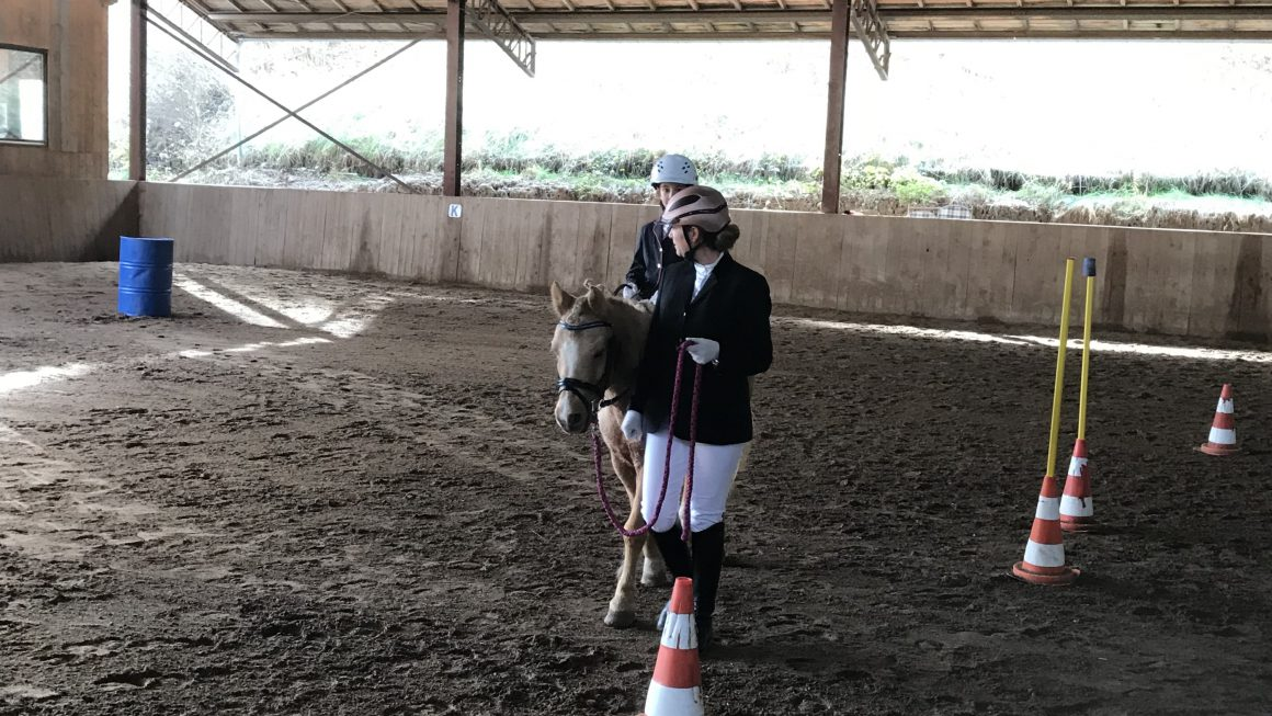 Working Equitation Turnier in Glatten