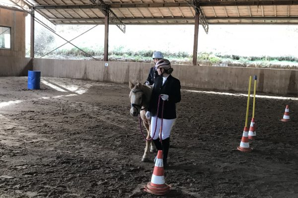 Working Equitation Turnier in Glatten
