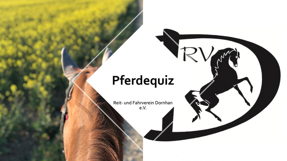 Pferdequiz und Pferde-Ausmalbilder