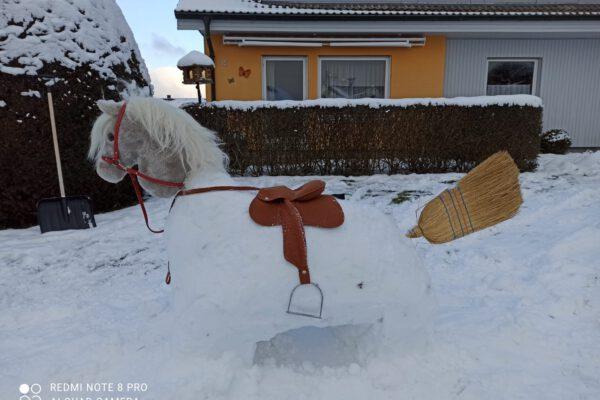 Schneepferde-Challenge
